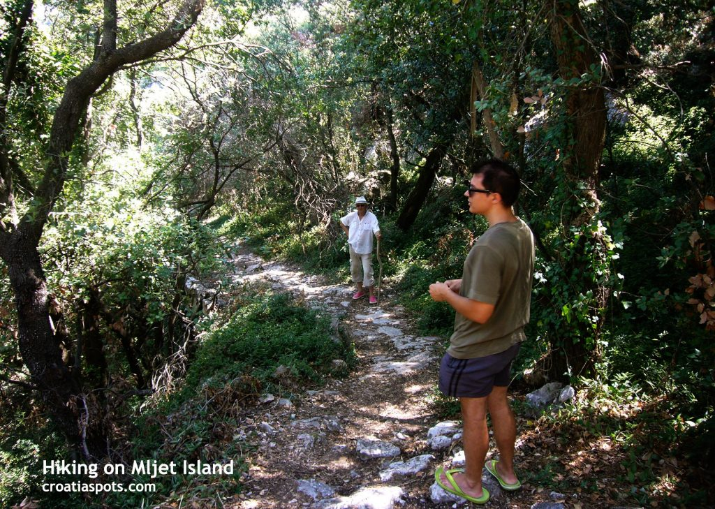 Hiking in Mljet National Park on a warm summer's day